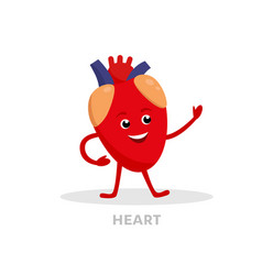 strong healthy heart cartoon character isolated on vector image