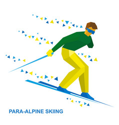 Para-alpine skiing sportsman ski slope down vector