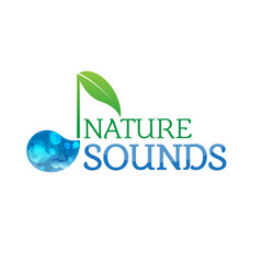 music nature sounds logo logotype vector image