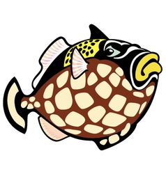 cartoon clown trigger fish vector image