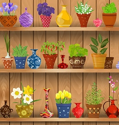 herbs and flowers planted in cute ceramic pots for vector image
