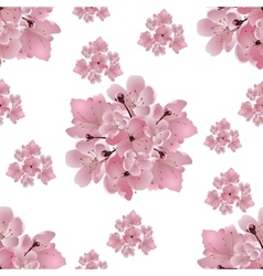 Japanese cherry Set of bouquets of pink cherry vector image
