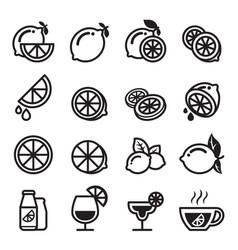Lemon icons vector