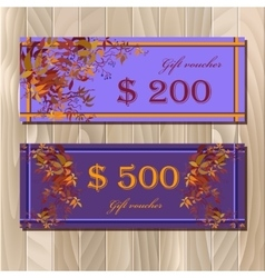 Voucher Gift certificate Coupon template for vector