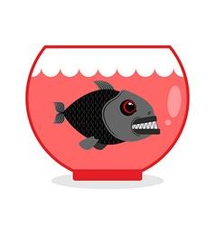 Piranha in aquarium dangerous home sea creature vector