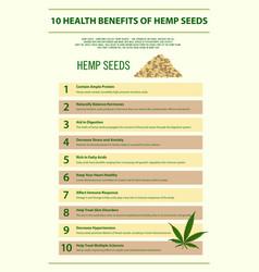 10 health benefits hemp seeds infographic vector image