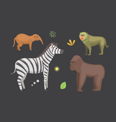 African animals cartoon set zebra hyena vector