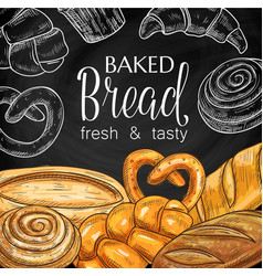 baked bread and pastry chalkboard sketch vector image