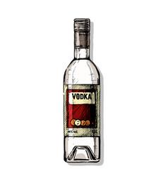 Bottle vodka vector