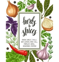 Frame design with various herbs and spices vector