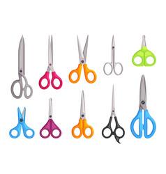 scissors set universal hairdressers blue kitchen vector image