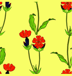 seamless pattern with red campion flowers vector image