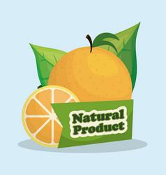 orange natural product market label vector image