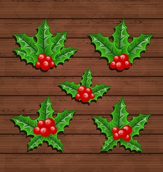 Christmas set holly berry branches vector image vector image