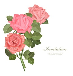 invitation card with bouquet of roses for your vector image