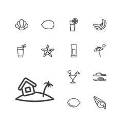 13 tropical icons vector