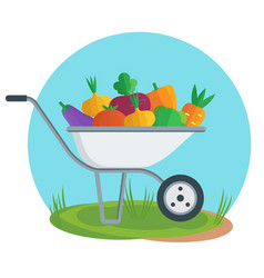 apple picking garden wheelbarrow with apple flat vector image