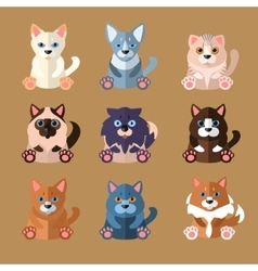 Breeds of Cats Icons vector