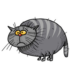Cartoon image of fat cat vector