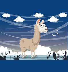 cartoon llama vector image