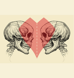 couple skulls and heart symbol with scissors line vector image
