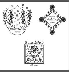 Feminine floral beauty logo collection vector