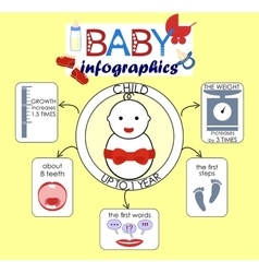 info graphics on the theme the child to 1 year vector image