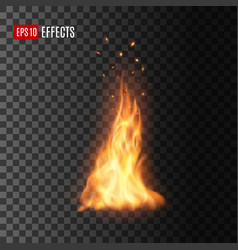 realistic fire with sparks isolated campfire vector image