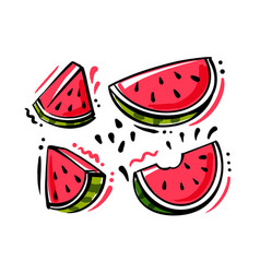 set watermelon fruits on white background vector image