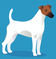 Smooth fox terrier dog vector