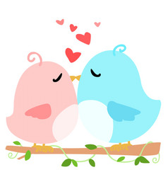 love bird on branch white background vector image
