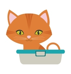 orange small cat sitting green eyes bathtub vector image