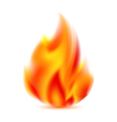 Fire bright flame on light background vector image