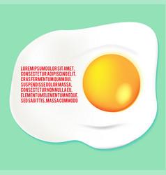 fried egg yolk background template vector image