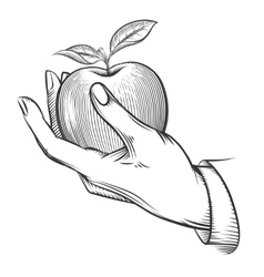Human hand with apple drawn in engraving style vector