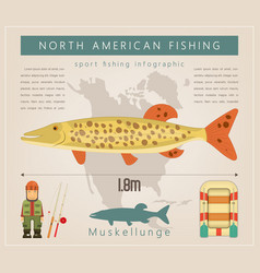 muskellunge vector image