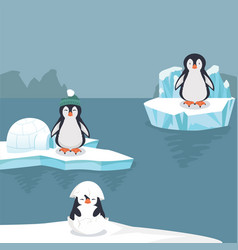 penguins in arctic background vector image