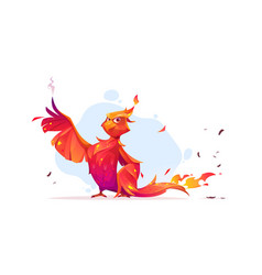 phoenix or fenix fire bird cartoon character vector image