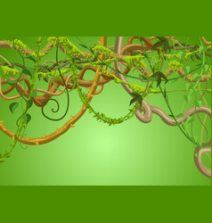 Twisted wild lianas branches background vector