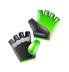 sport gloves isolated on white vector image vector image