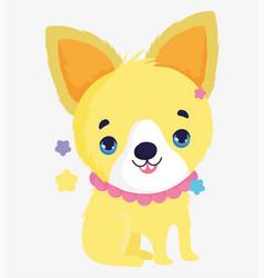 funny cute dog with collar domestic cartoon animal vector image