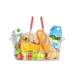 Metallic shopping basket with products vector
