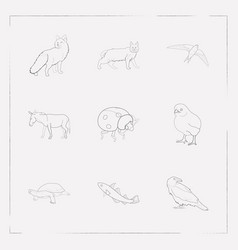 set of animal icons line style symbols with swift vector image
