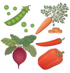 veget pattern 8 vector image