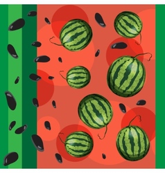 Watermelon and seeds from watermelon vector image vector image