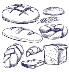 bakery set hand drawn llustration sketch vector image