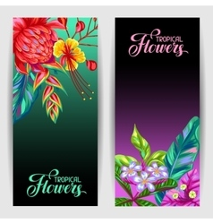 Banners with Thailand flowers Tropical multicolor vector image