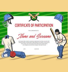 Certificate participation in cricket tournament vector