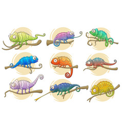 Chameleon lizard icons bright reptile animals vector