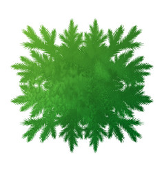 green forest kaleidoscope frame vector image